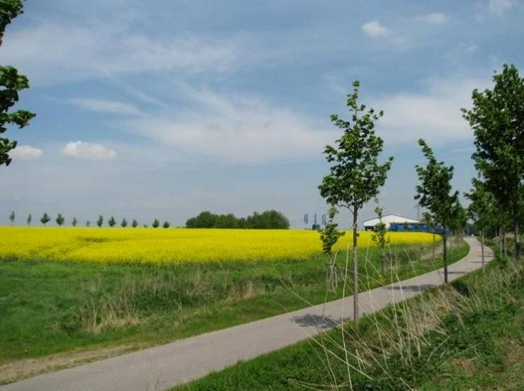 NEU! Gewerbegrundstück vor den Toren Rostocks - TOP LAGE - Grundstück kaufen - Bild 1