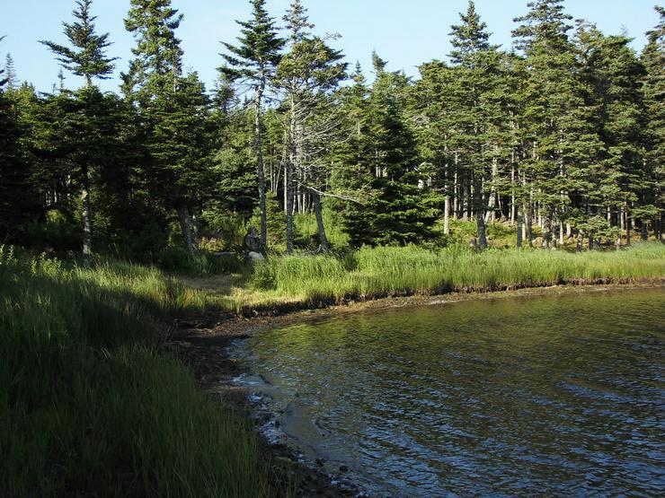 Bild 4: Grundstücke in Neuschottland --- Ost-Kanada