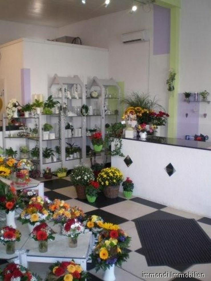 Bild 6: Schönes Ladengeschäft in gut sichtbarer Lage!