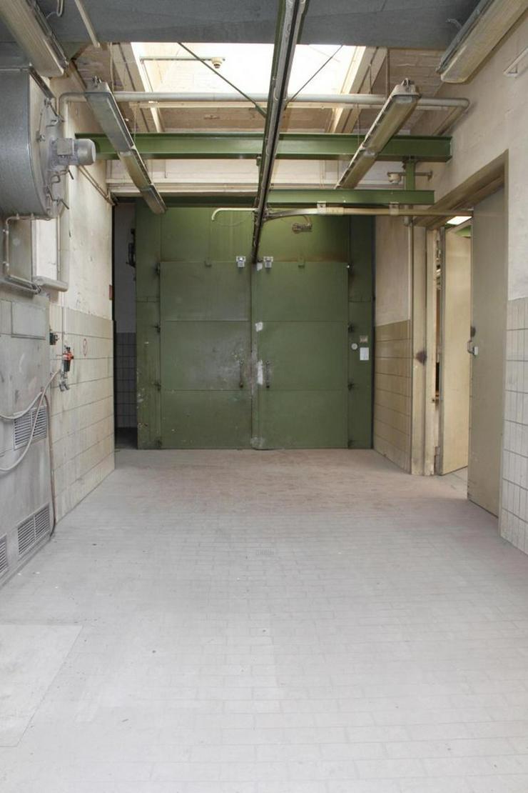 Bild 5: PROVISIONSFREI Produktionshalle mit Starkstrom, Lackierhalle, Brennofen u.s.w.