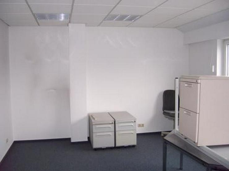 Bild 2: Moderne Büros in gepflegter, ruhiger Umgebung