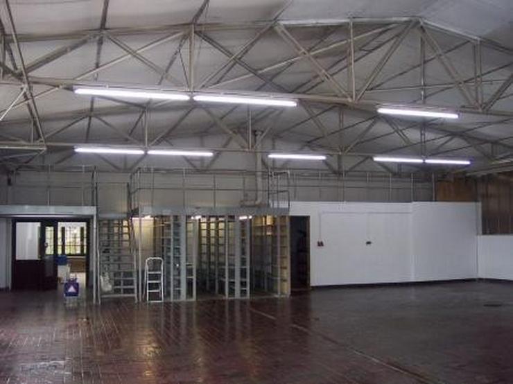 Bild 2: Halle, Ausstellungsfläche, Büro, Wohnung, sehr viel gesehen, sehr gepflegt