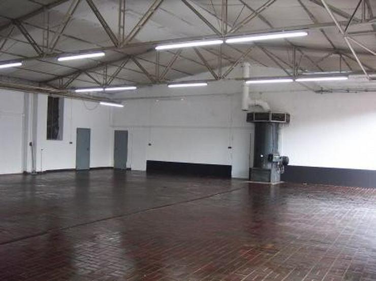 Halle, Ausstellungsfläche, Büro, Wohnung, sehr viel gesehen, sehr gepflegt - Gewerbeimmobilie kaufen - Bild 1
