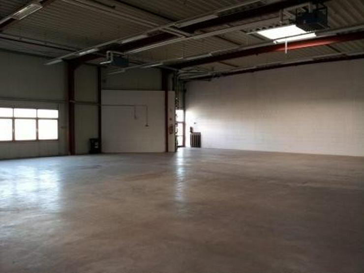 Repräsentative Lager/Arbeitshalle/Büro nahe A1-A8