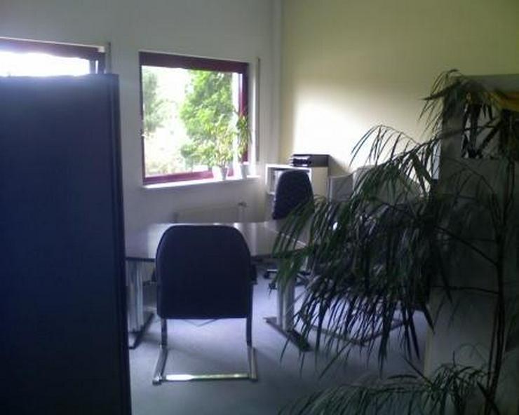 Bild 4: Ruhiges, sehr gepflegtes Büro