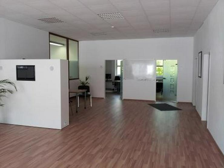 Bild 3: Moderne Büro- und sehr saubere Lagerräume