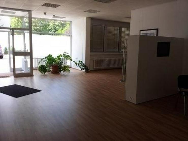 Bild 2: Moderne Büro- und sehr saubere Lagerräume