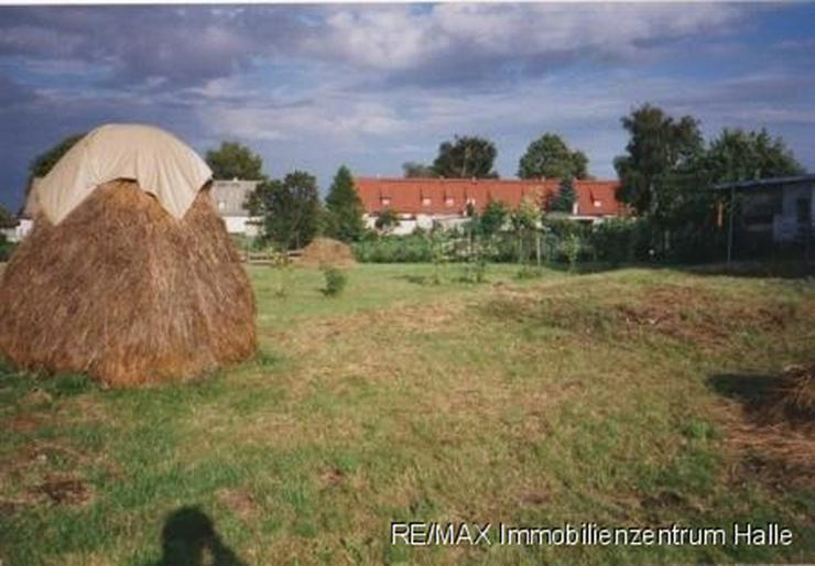 Bild 3: Wohnen im idyllischen Siersleben !!! 2 Grundstücke mit vielen Möglichkeiten ...