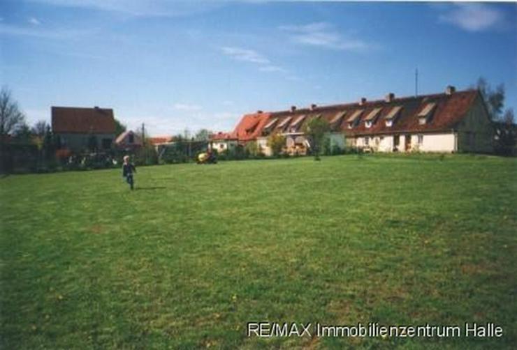 Bild 5: Wohnen im idyllischen Siersleben !!! 2 Grundstücke mit vielen Möglichkeiten ...