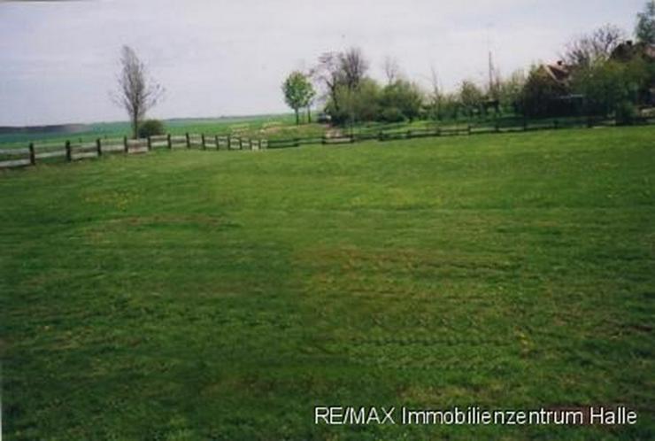 Wohnen im idyllischen Siersleben !!! 2 Grundstücke mit vielen Möglichkeiten ... - Grundstück kaufen - Bild 1