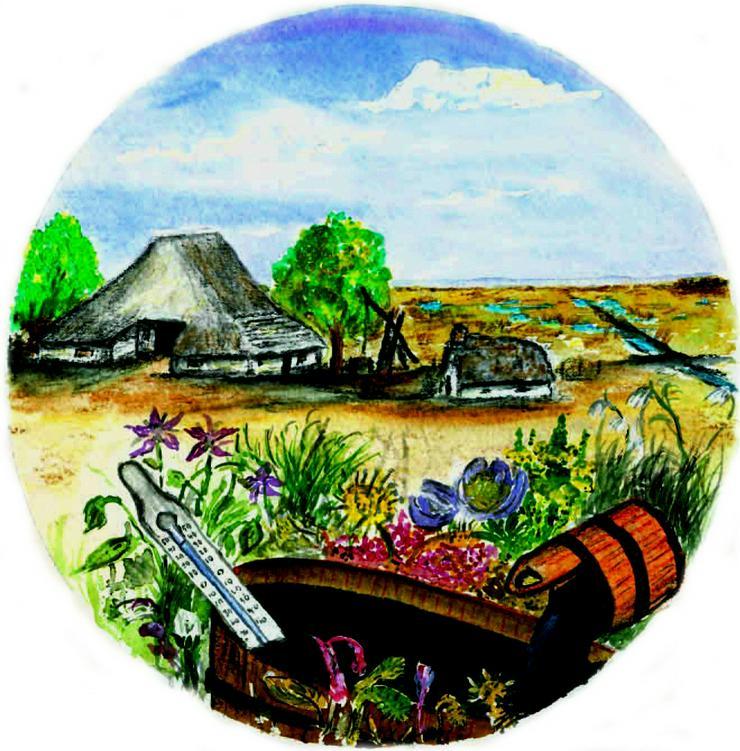 Terrabath, Bademoor, Moorpackung, Akne und mehr
