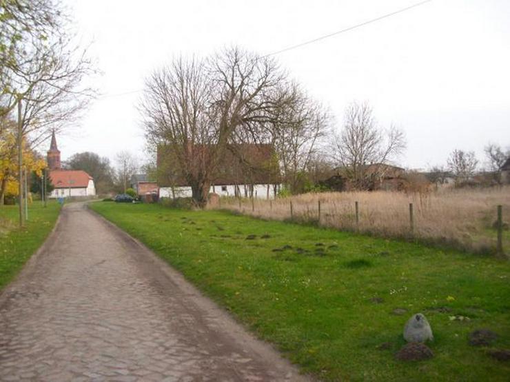 Baugrundstück mit Bauernhausruine - Grundstück kaufen - Bild 2