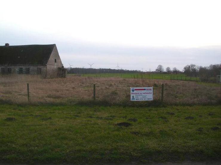 Bild 1: Baugrundstück mit Bauernhausruine