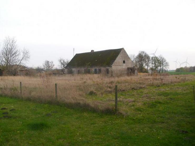 Bild 3: Baugrundstück mit Bauernhausruine