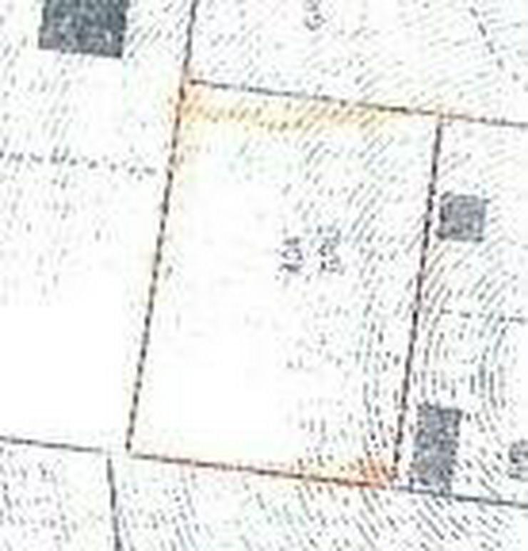Bild 4: Tolles Grundstück in Landsberg OT: Reussen