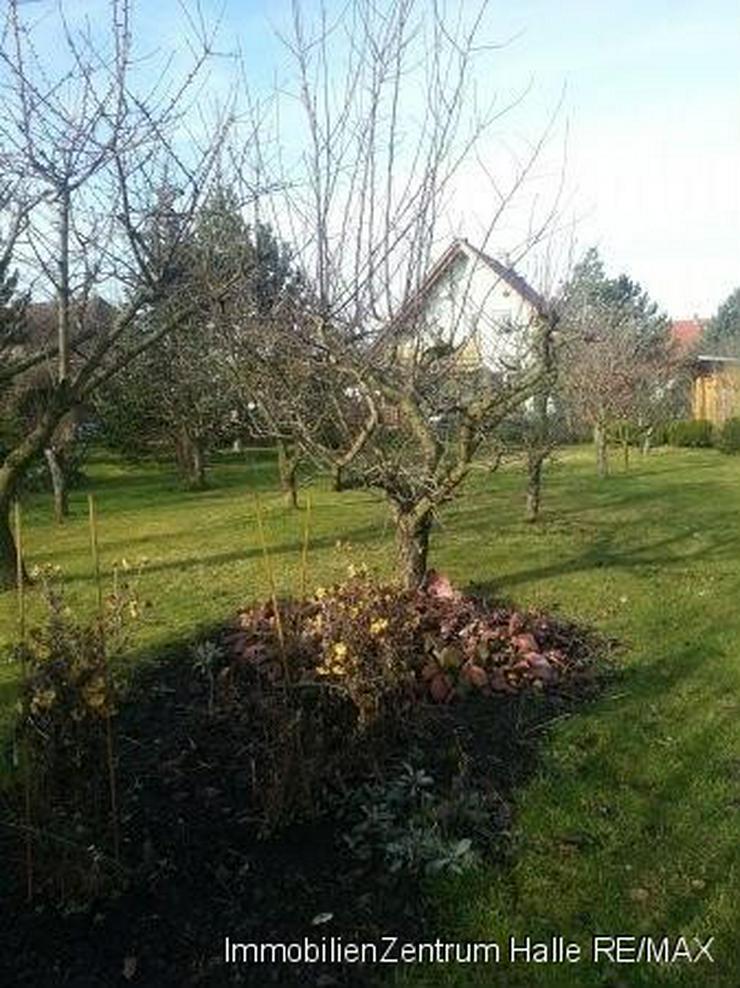 Bild 6: Liebevoll gepflegtes Einfamilienhaus mit großem Garten in Teutschenthal.