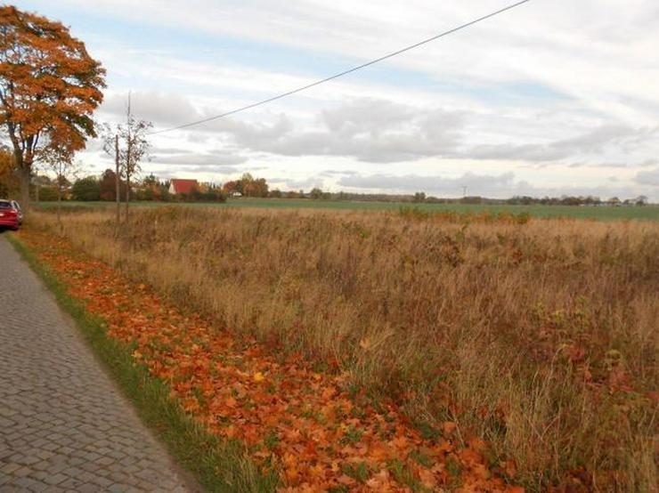 Attraktives Grundstück Nahe Greifswald