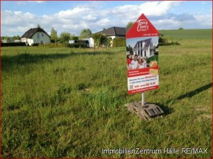 Gut und günstig wohnen in Wallwitz - Grundstück kaufen - Bild 1
