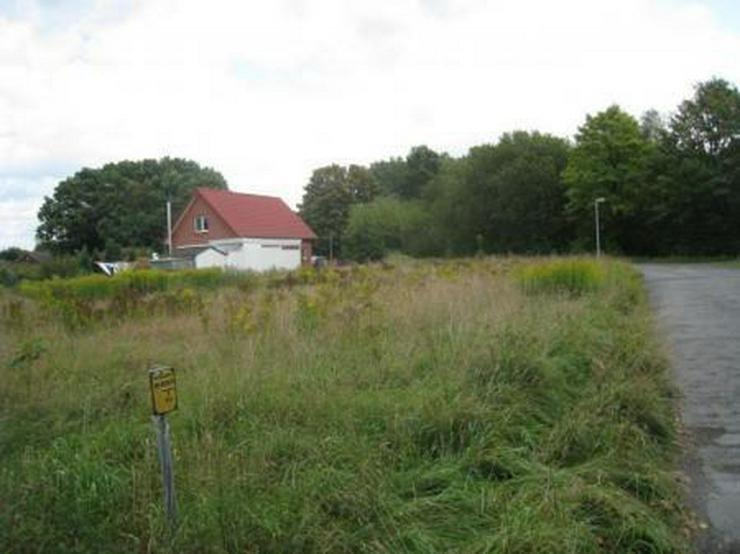 Bild 4: Nur noch ein Grundstück !!!!