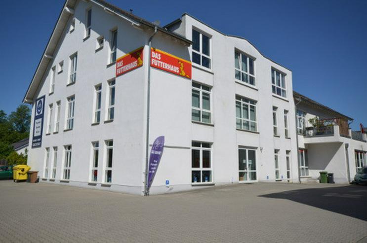 Provisionsfrei und sofort verfügbar - helle Büro-, Laden- oder Praxisfläche in Hennef - Gewerbeimmobilie mieten - Bild 1