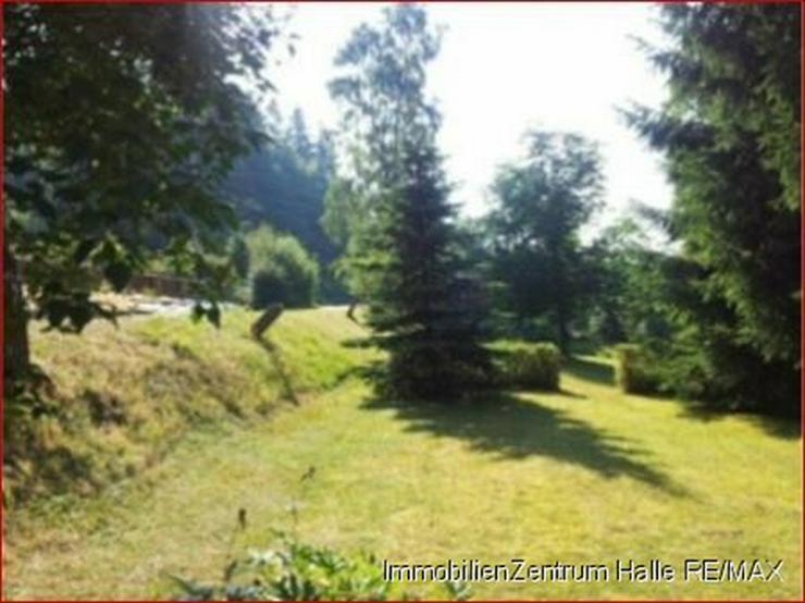 Bild 3: Ferienhaus im Grünen mit vielen Möglichkeiten