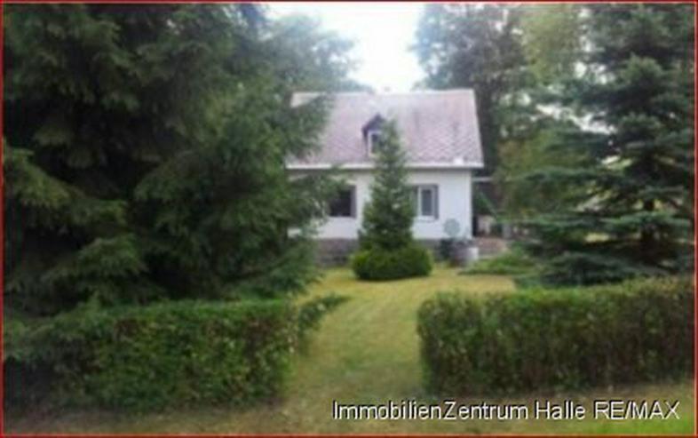 Bild 6: Ferienhaus im Grünen mit vielen Möglichkeiten