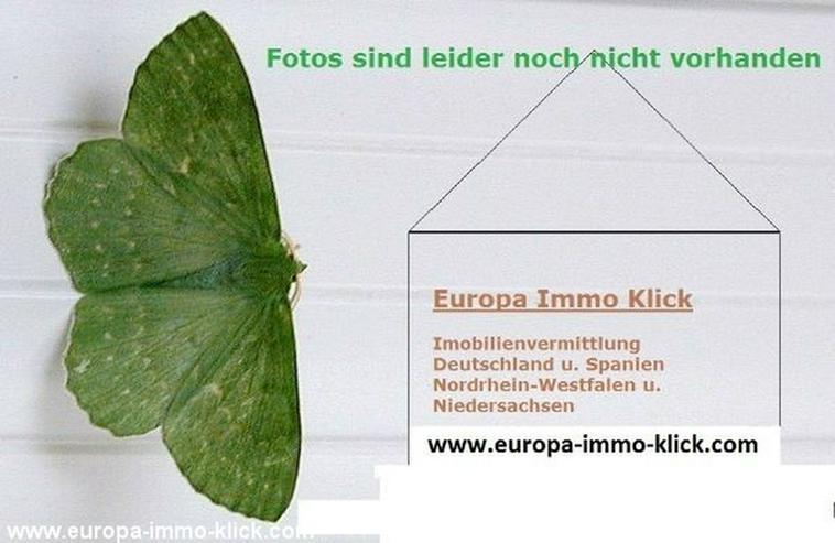 3 ZKB Wohnung Keller, Abstellraum Hausberge 32457 - Wohnung mieten - Bild 1