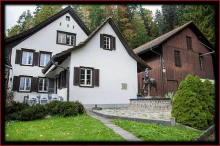 Excellentes Landgut für Pferdeliebhaber ! - Haus kaufen - Bild 1