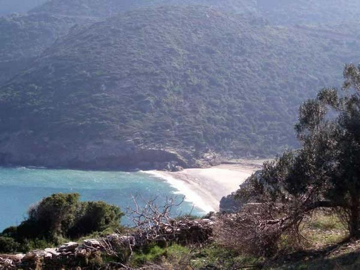 Bild 2: Traumgrundstück auf der Insel Evia