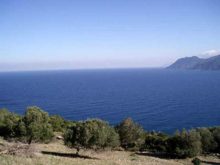 Bild 3: Traumgrundstück auf der Insel Evia