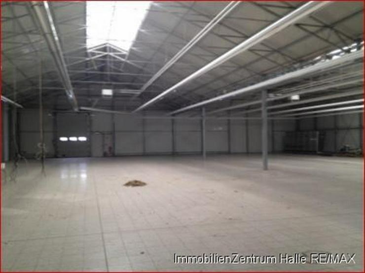Bild 5: Große Gewerbe-/Lagerhalle an der A14 im Norden v. Halle