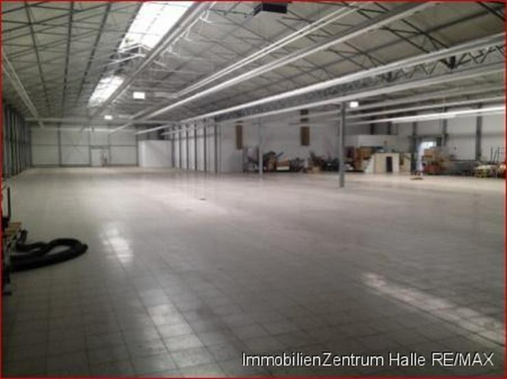 Bild 4: Große Gewerbe-/Lagerhalle an der A14 im Norden v. Halle