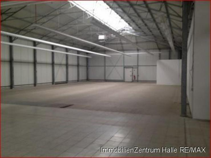 Bild 6: Große Gewerbe-/Lagerhalle an der A14 im Norden v. Halle
