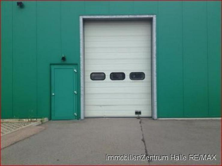 Bild 3: Große Gewerbe-/Lagerhalle an der A14 im Norden v. Halle