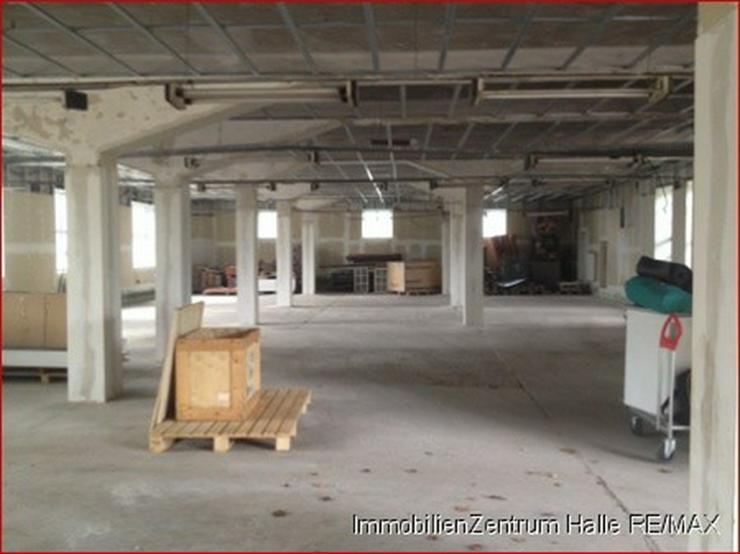 Bild 2: Lagerhalle an der A14, im Norden von Halle !