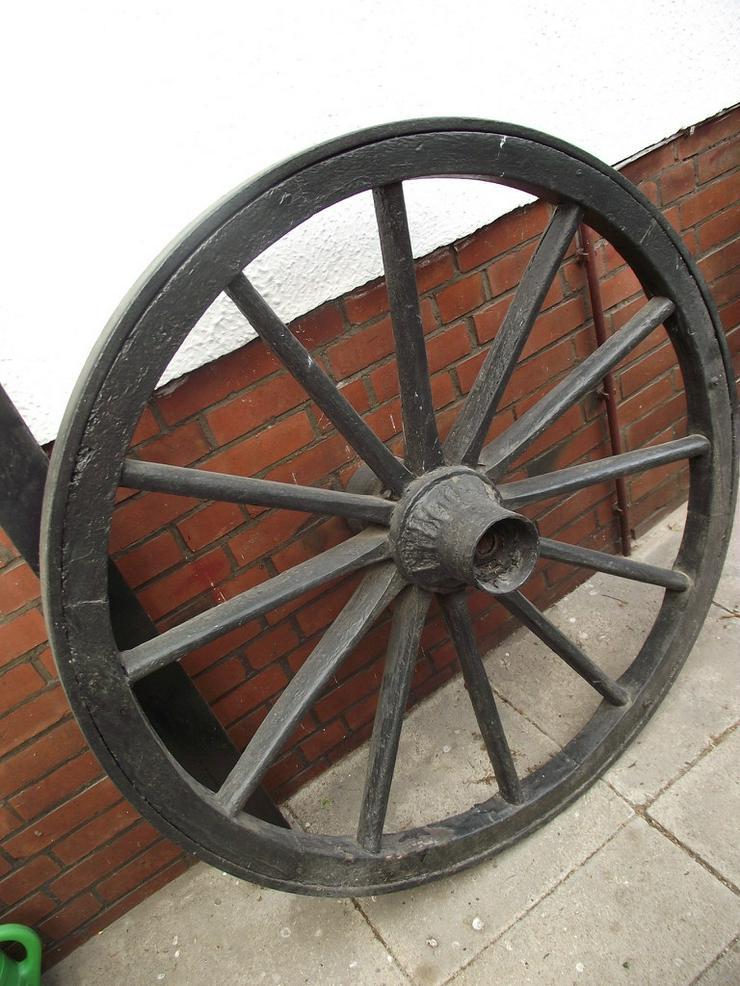 Bild 4: Altes Wagenrad mit Kutschgeschirrteilen