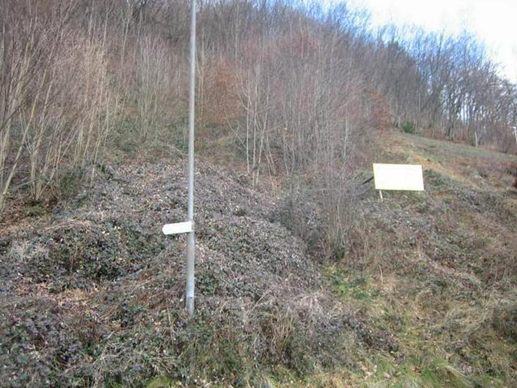 Bild 5: Bauen Sie in Geschwend wo die schönsten Schwarzwaldhäuser sind