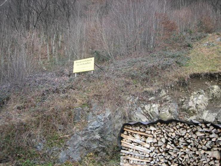 Bild 2: Bauen Sie in Geschwend wo die schönsten Schwarzwaldhäuser sind