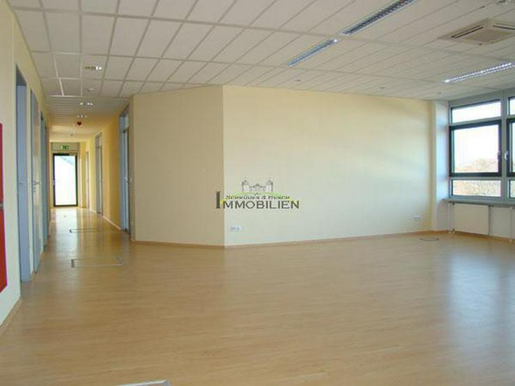 Bild 3: Hochwertige Bürofläche im Businesscenter ARCUS PARK