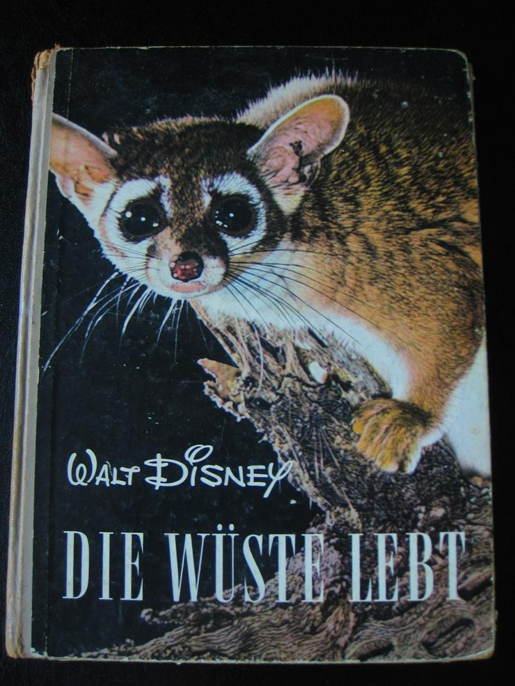Walt Disney DIE WÜSTE LEBT