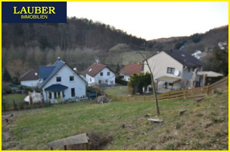 LAUBER IMMOBILIEN: Baugrundstück in Hang-/Orts-/Waldrandlage von Gelnhausen-Haitz - Grundstück kaufen - Bild 1