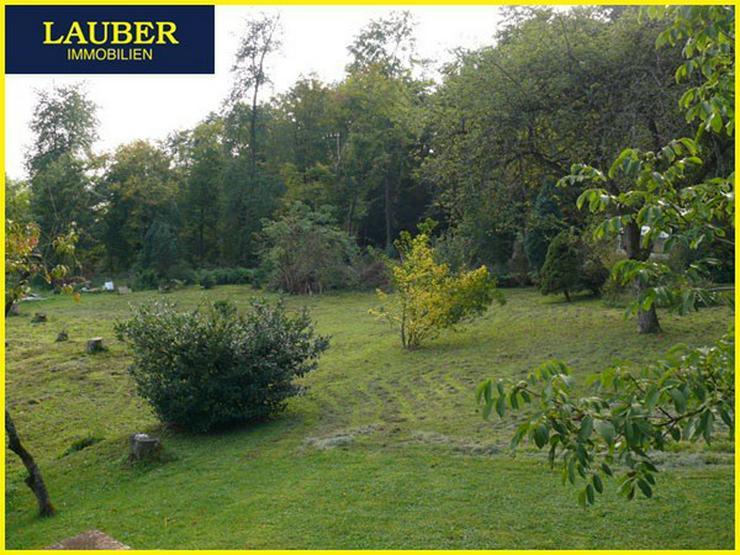 Bild 4: LAUBER IMMOBILIEN: Großes Baugrundstück mit am Waldrand, Ranstadt-Dauernheim