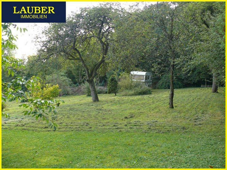 Bild 3: LAUBER IMMOBILIEN: Großes Baugrundstück mit am Waldrand, Ranstadt-Dauernheim