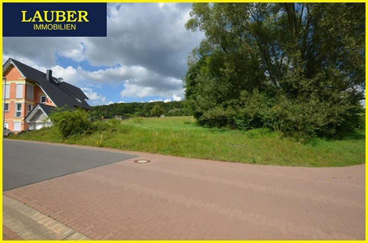 LAUBER IMMOBILIEN: Baugrundstück in direkter u. sonniger Feldrandlage von Geiselbach - Grundstück kaufen - Bild 1