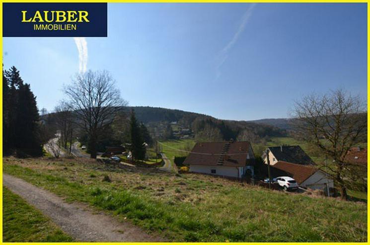 Bild 3: LAUBER IMMOBILIEN: Natur pur, sonnenverwöhnte Lage in Biebergemünd-Breitenborn