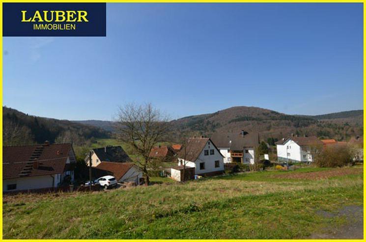 Bild 2: LAUBER IMMOBILIEN: Natur pur, sonnenverwöhnte Lage in Biebergemünd-Breitenborn