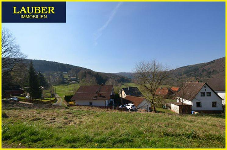 Bild 4: LAUBER IMMOBILIEN: Natur pur, sonnenverwöhnte Lage in Biebergemünd-Breitenborn