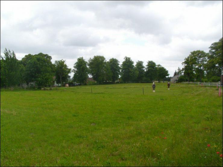 Bild 4: Preisgünstiges Bauland 10 km vor der Insel Usedom in 3 Parzellen teilbar