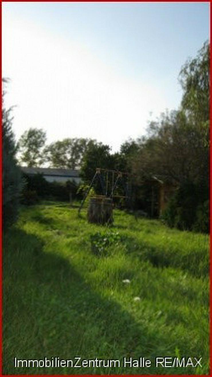 Garten kaufen  Haus mit viel Potenzial und riesigem Garten für Kreative in Wettin ...