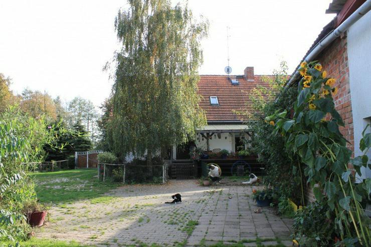 Bild 4: Bauernhaus im Elefantendorf Platschkow - ländliche Idylle